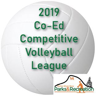 2019 coed volleyball league