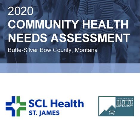 Health Needs Assessment Logo