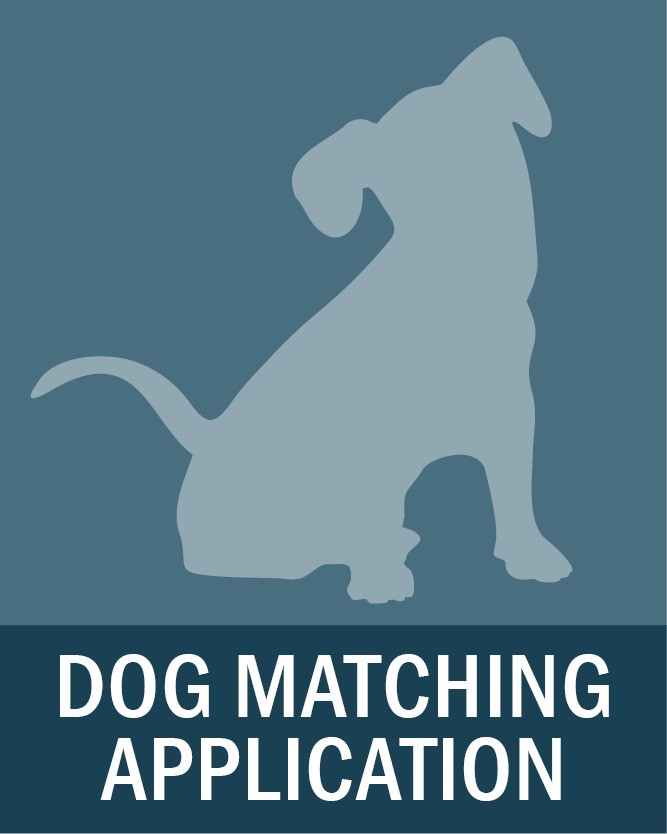 Dog Matching Application